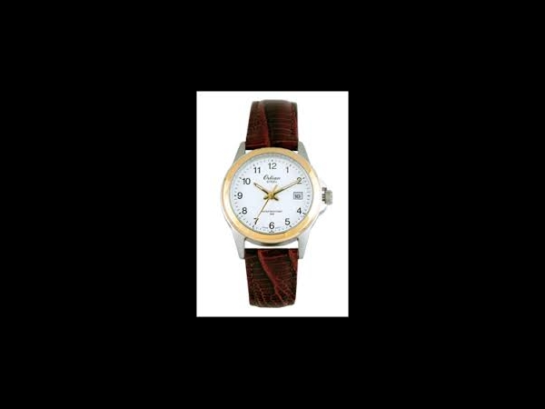 Watch by Bering Time